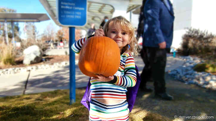 Children's Hospital In Aurora Creates Pumpkin Patch For Patients