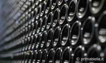 Vino novello 2020, arrivano 3,5 milioni di bottiglie - Prima Biella