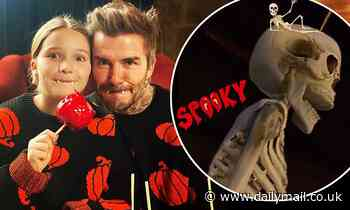 David Beckham and daughter Harper share sweet Halloween snap