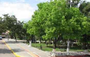 Mantenimiento de zonas verdes, se adelantarán en Baraya Huila - Alerta Tolima