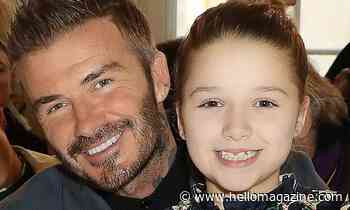 David Beckham adorably twins with daughter Harper in sweet Halloween photo