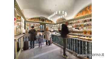 Il Bar dell'Anno 2021 è dei Cerea Il Caffè Cavour 1880 vince grazie alla bontà e all'etica - IL GIORNO