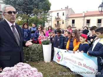 Messaggio dal cittadino onorario di Bari-Carbonara, Rocco De Adessis, alla comunità di Colletorto - Il Quotidiano del Molse
