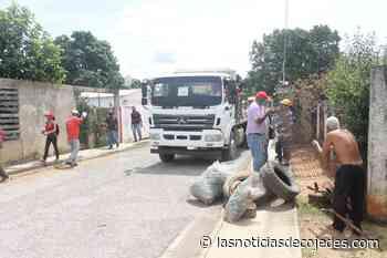 Tinaquillo: Buena Vista y El Carmen recibieron jornada especial de limpieza - Las Noticias de Cojedes