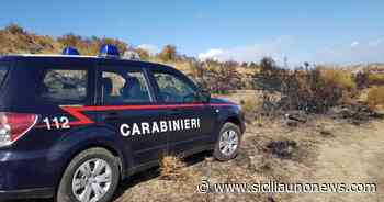 Incendio Ciminna, convalidato un arresto - http://www.siciliaunonews.com