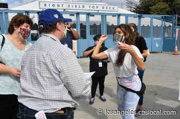 Marisa Tomei Hands Out Cookies To Voters At Dodger Stadium - CBS Los Angeles