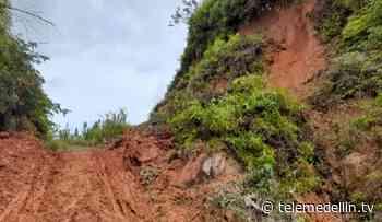 Fuertes lluvias han causado estragos en Vegachí, Antioquia - Telemedellín