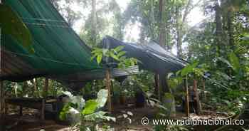 Catatumbo: Ejército desmanteló dos laboratorios de coca en El Tarra - http://www.radionacional.co/