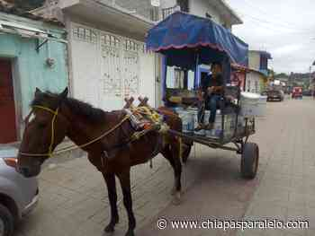 En Acala, desde hace 35 años persiste el consumo de agua del pocito - Chiapasparalelo