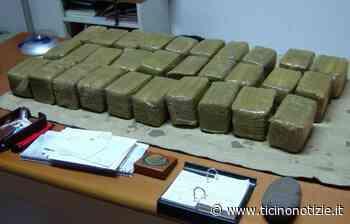 Cusago-Milano, la Polizia arresta 61enne albanese con 20 chili di droga | Ticino Notizie - Ticino Notizie