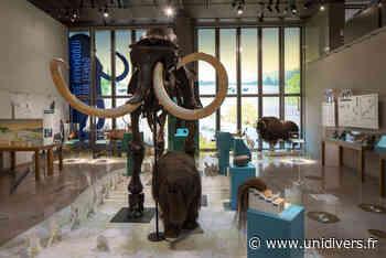 À la recherche du mammouth disparu : l'enquête Musée Archéa,Louvres Louvres - Unidivers