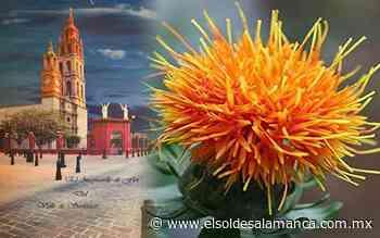 Historia de riqueza de las especias en Valle de Santiago y su suculento sabor - El Sol de Salamanca
