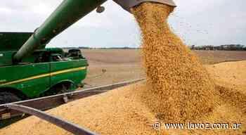 Recuperaron 150 toneladas de soja robadas a un productor de Oncativo - La Voz del Interior