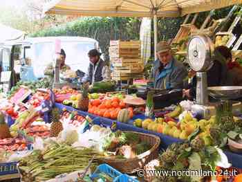 Cinisello Balsamo, il mercato in piazza Gramsci - Nord Milano 24