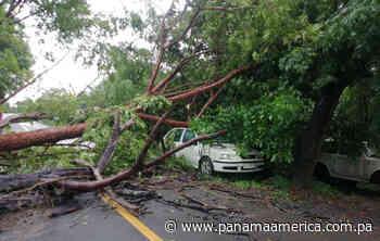 Fuertes lluvias provocan afectaciones en Las Tablas y Guararé, provincia de Los Santos - Panamá América
