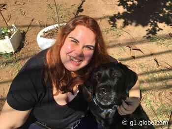 Projeto social de Duartina que ensina braille promove live sobre o universo do cão-guia - G1