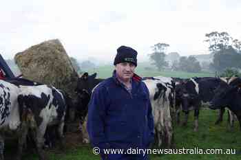 Hands-on approach at the heart of Warragul farm's success - Dairy News Australia
