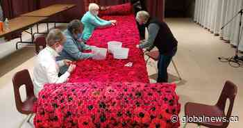 Minnedosa volunteers complete 14-metre poppy quilt in recognition of Remembrance Day - Global News