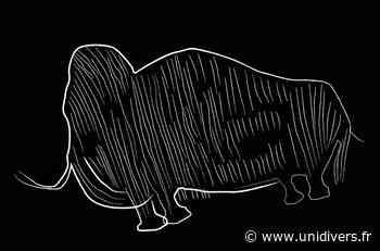 Atelier jeunes archéos : dessine moi un mammouth jeudi 22 octobre 2020 - Unidivers