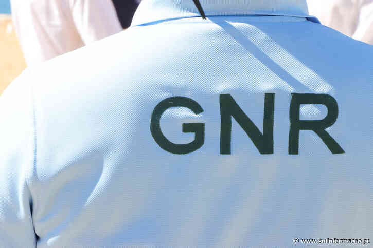 Ladrão barricado em Boliqueime foi detido depois de uma hora de negociações - Sul Informacao