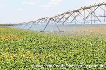 União de todos pela irrigação no Apodi - Egídio Serpa - Diário do Nordeste