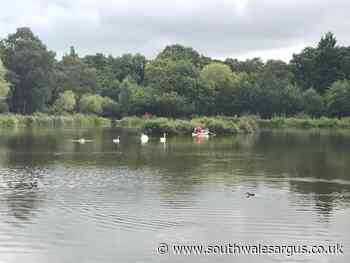 Cwmbran Boating Lake to be managed by angling club - South Wales Argus