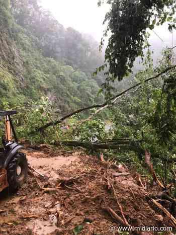 Aumenta la tragedia. Dos personas están enterradas en Río Sereno. Video - Mi Diario Panamá