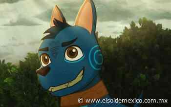 El camino de Xico despierta el amor por las tradiciones - El Sol de México