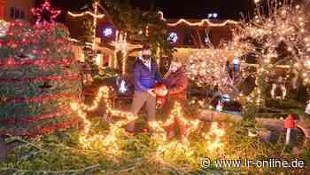 Lichterglanz: In Elsterwerda wird ein Garten zum Sternenhimmel - Lausitzer Rundschau