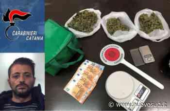 Belpasso, gli trovano in casa 220 grammi di marijuana: ai domiciliari - Nuovo Sud