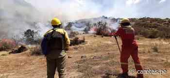 Autoridades solicitan apoyo de helicópteros para apagar intenciones forestales en Urubamba y San... - Caretas