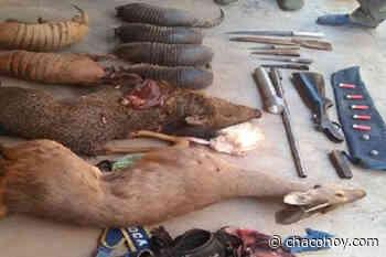 General San Martin, cazadores furtivos: secuestran armas de fuego y animales silvestres - ChacoHoy