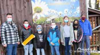 AG Bienen an Grund- und Mittelschule Schnaittenbach erntet ein Kilogramm Wachs - Onetz.de