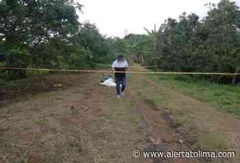 Asesinaron a un hombre en Falan, al norte del Tolima - Alerta Tolima