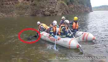 Rescatan ahogado en la represa del Sisga, Chocontá, Cundinamarca - Noticias Día a Día