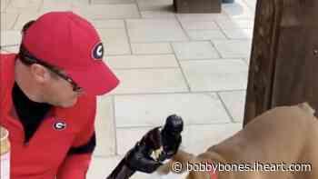 Bobby's Dog Stanley Makes Guest Appearance On Luke Bryan's Instagram & ESPN | The Bobby Bones Show | Bobby Bones - iHeartRadio