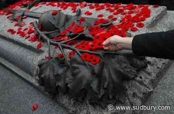 Fewer people plan to attend virtual or in-person Remembrance Day ceremonies: poll