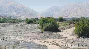 Moquegua: Aguas del río Torata se tiñen de color marrón - LaRepública.pe
