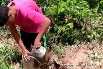 Juatuba: moradores estão sem água há cinco dias e ilhados por causa de erosão - O Tempo