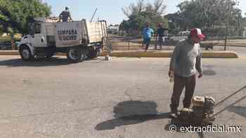 Alcalde de Navolato pone en marcha campaña de bacheo - Extraoficial.mx