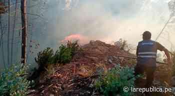 Cajamarca: incendios forestales se registraron en Cajabamba y Chota   LRND - LaRepública.pe