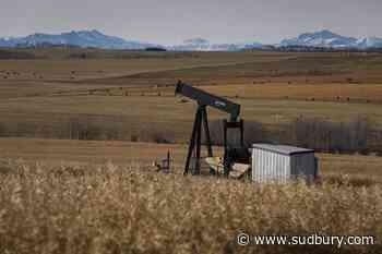 Alberta farmers file what may be first class-action lawsuit over unpaid oil leases