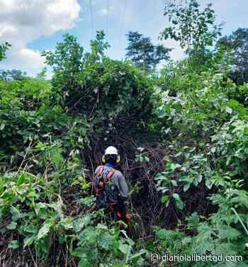 Trabajos eléctricos en Polonuevo - Diario La Libertad