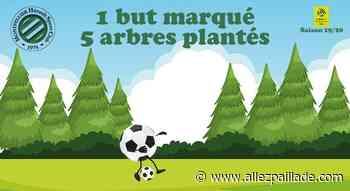 Delort et Savanier ont planté des arbres à Poussan - AllezPaillade.com