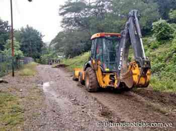Recuperan vialidad agrícola de San Casimiro - Últimas Noticias