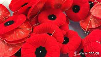 What's open and closed on Remembrance Day in the Greater Sudbury Region - CBC.ca