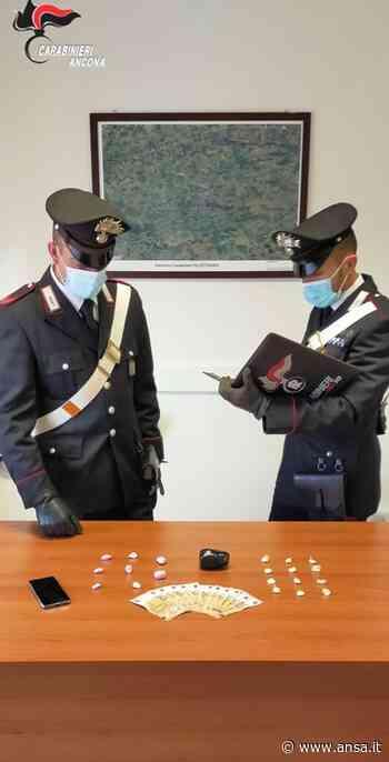 Droga: spacciatore 20enne arrestato da CC a Polverigi - Agenzia ANSA