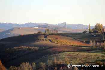 Dogliani, produttore di vino a processo per sottrazione e vendita di Nebbiolo sequestrato dai Nas - TargatoCn.it