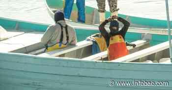 ONU condenó irrupción en viviendas de San Felipe, Baja California, donde fueron arrestados líderes de pescadores - infobae