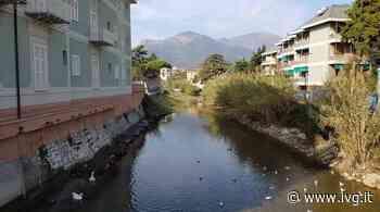 Loano, manutenzione sui corsi d'acqua: primi interventi su Nimbalto e rio Casazza - IVG.it